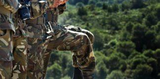 Algeria: A terrorist eliminated in the province of Bejaia