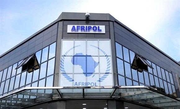 AFRIPOL to set up three working groups to combat crime