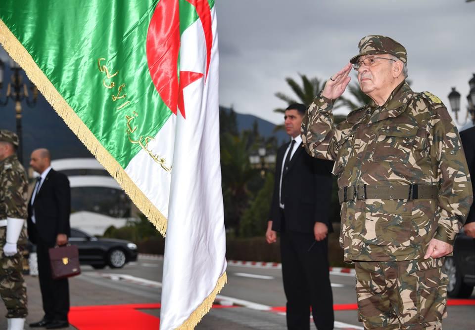 Algerische Patience